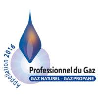 logo-professionneldugaz